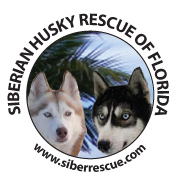 Siberian Husky Rescue of Florida, Inc